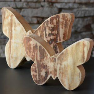 Schmetterlling